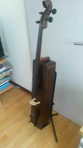 Holiday cello - Copyright Herman Gertner-Lauenstein.